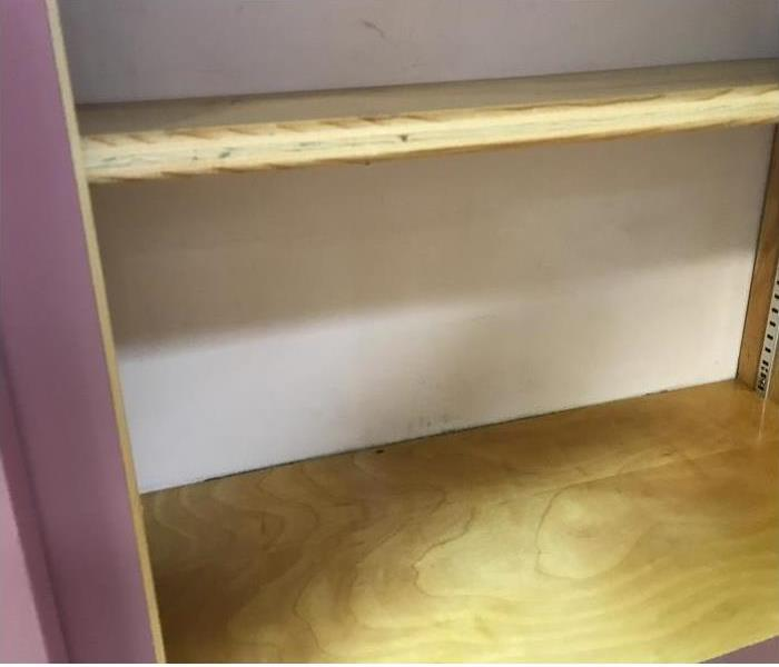 Mold in Cabinet After