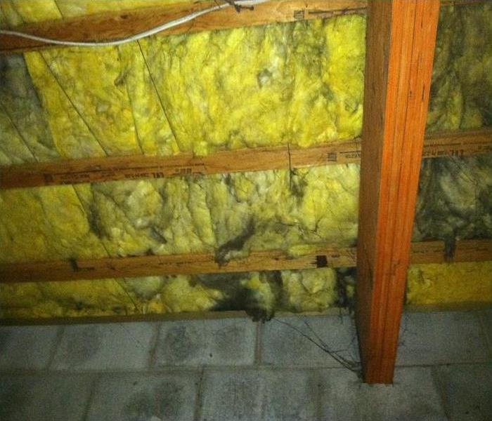 Soot on Insulation