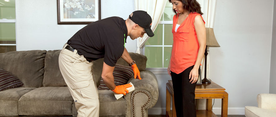 Bloomsburg, PA carpet upholstery cleaning